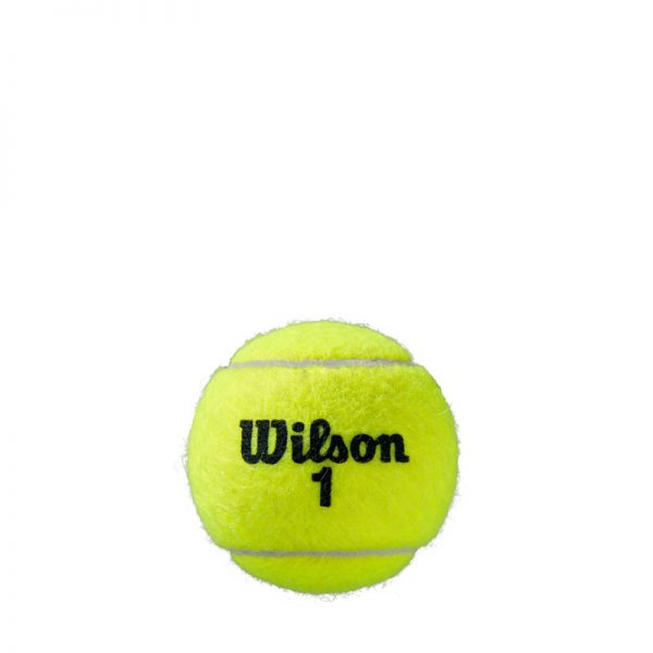 Wilson Roland Garros Clay 4 Ball